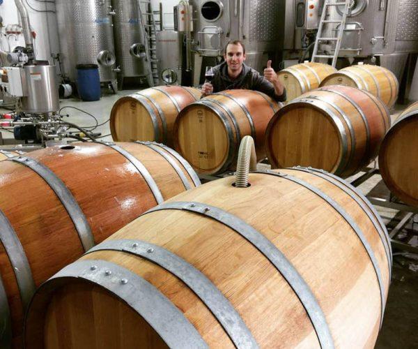 Barrique Fässer am Weingut Fürnkranz